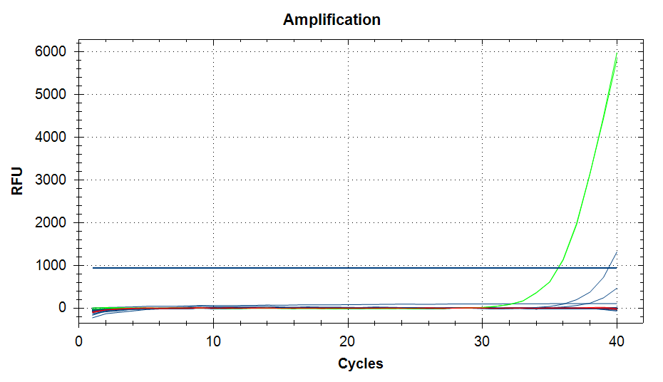 qPCR amplification plots