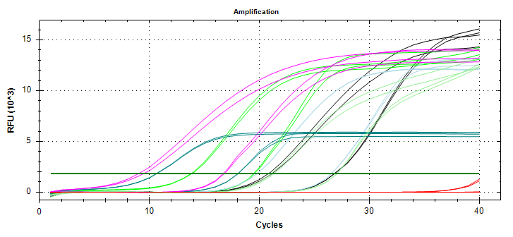 Amplifcation plots