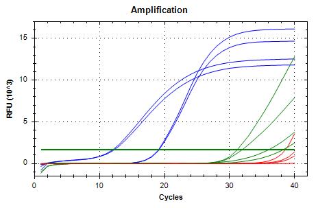 TIF3s8_FWD/REV-2 (blue) and TIF3s12_FWD/REV (green) amplifcation plots