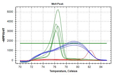 TIF3s8_FWD/REV-2 (blue) and TIF3s12_FWD/REV (green) melt curves