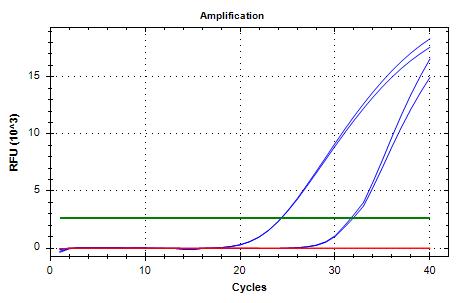 TIF3s8_FWD/REV-1 amplifcation plots