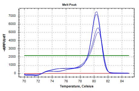 TIF3s8_FWD/REV-1 melt curves