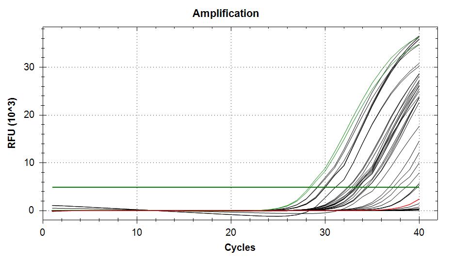 APLP amplifcation plots
