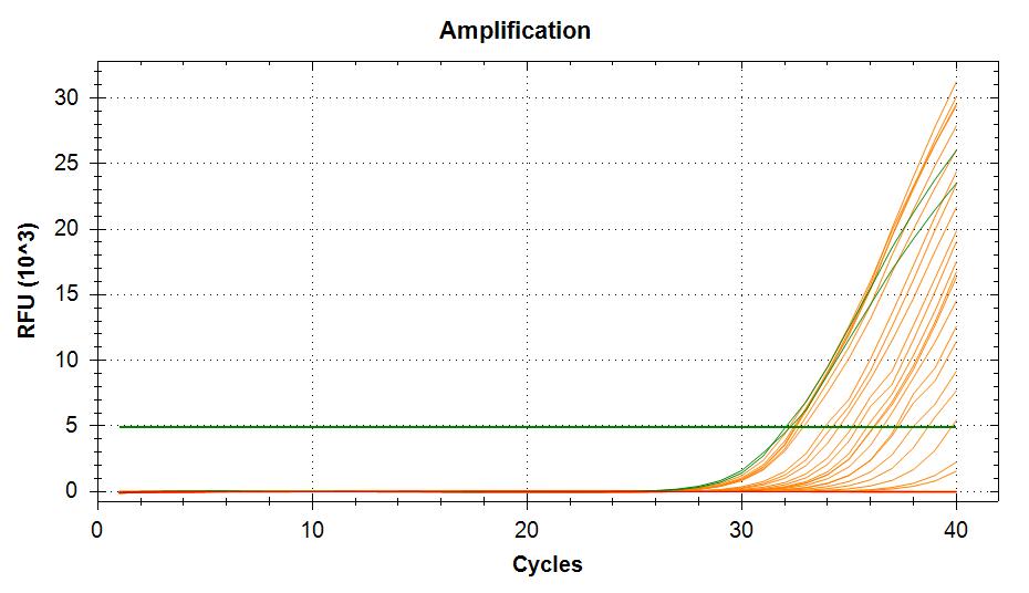 TIF3s8-1  amplifcation plots