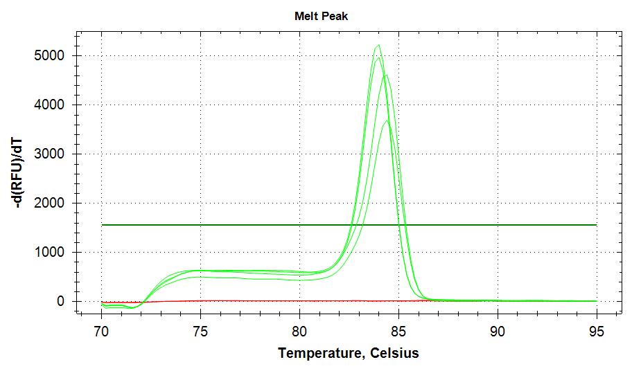 RPL5 v3 melt plots