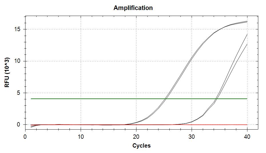 TIF3s6b v2 amplification plots