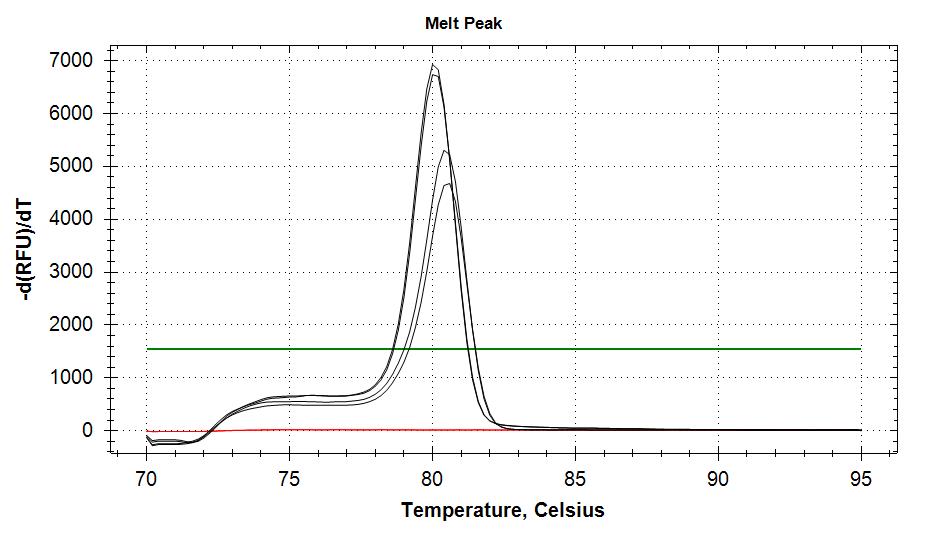 TIF3s6b v2 melt plots