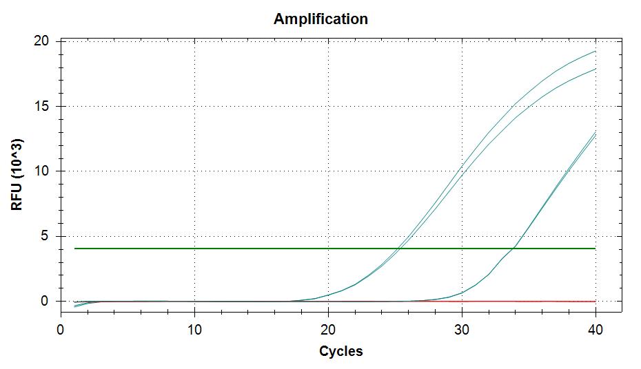 TIF3s6b v3 amplification plots