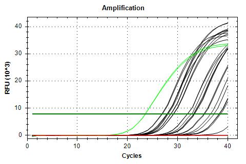 RPL5 v2 amplification plots