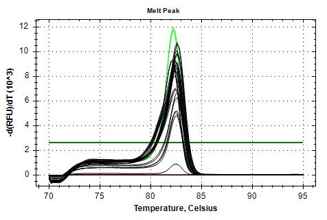 RPL5 v2 melt plots