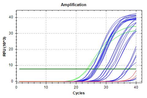RPL5 v3 amplification plots