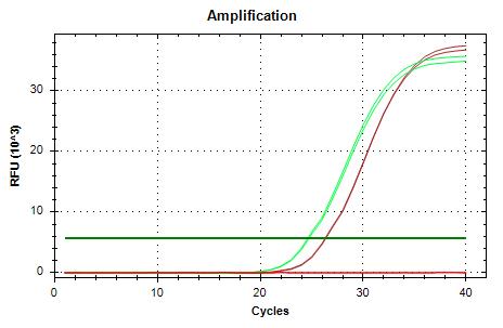 EF1a-v1 amp plots.png