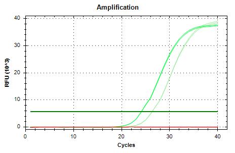 EF1a-v2 amp plots.png
