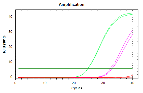 EF1a-v3 amp plots.png