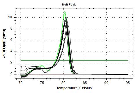 EF1a-v1 melt plots.png